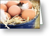 Dark Brown Eggs Greeting Cards - Fresh farm eggs Greeting Card by Stephanie Frey