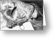 Horse Drawings Greeting Cards - Fresh Milk Greeting Card by Sheona Hamilton-Grant