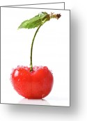 Vitamin Greeting Cards - Fresh red cherry isolated on white Greeting Card by Sandra Cunningham