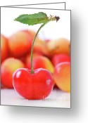Eat Greeting Cards - Fresh ripe cherries isolated on white Greeting Card by Sandra Cunningham