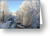 White River Scene Greeting Cards - Fresh Snowfall Gauley River Greeting Card by Thomas R Fletcher