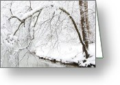 White River Scene Greeting Cards - Fresh Snowfall on the River Greeting Card by Thomas R Fletcher
