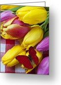 Table Cloth Greeting Cards - Fresh Tulips and Red Butterfly Greeting Card by Garry Gay