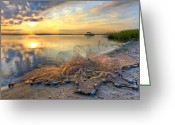 Florida Bridge Greeting Cards - Fresh Water Greeting Card by Debra and Dave Vanderlaan
