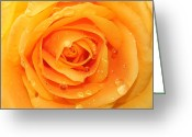 Romanticism Digital Art Greeting Cards - Fresh Yellow  Greeting Card by Mark Ashkenazi