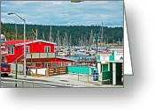 Randall Templeton Greeting Cards - Friday Harbor Greeting Card by Randall Templeton