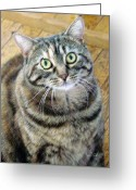 Whiskers Greeting Cards - Frieda Up Close II Greeting Card by Suzanne Gaff