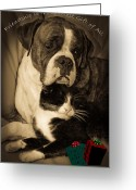 Buddies Greeting Cards - Friendship is the Greatest Gift of All Greeting Greeting Card by DigiArt Diaries by Vicky Browning