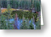 Rocky Mountain National Park Greeting Cards Greeting Cards - From Above Greeting Card by Kathleen Struckle