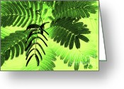 Fine_art Greeting Cards - Fronds Greeting Card by Gerlinde Keating - Keating Associates Inc