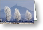 Tree-covered Greeting Cards - Frost-covered Trees And Glastonbury Tor Greeting Card by Duncan Shaw