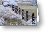 Split Rail Fence Greeting Cards - Frosted Fence Greeting Card by Laurisa Rabins