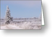 Alberta Foothills Landscape Greeting Cards - Frosty Landscape Greeting Card by Greg Hammond