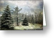 Winter Storm Digital Art Greeting Cards - Frosty Greeting Card by Lois Bryan