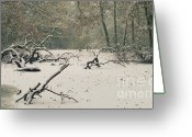 Cold Photo Greeting Cards - Frozen Fallen Wide Greeting Card by Andy Smy