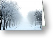 Natural Wolf  Greeting Cards - Frozen Fog Greeting Card by Svetlana Sewell