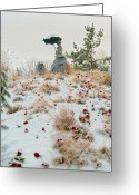 Granite Sculpture Greeting Cards - Frozen Viewpoint Greeting Card by Timothy Hedges