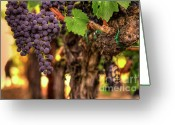 Cabernet Sauvignon Greeting Cards - Fruit Of The Gods Greeting Card by Mars Lasar