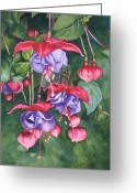 Fushia Painting Greeting Cards - Fuchsia Trio Greeting Card by Tina  Sander