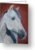 Andalusian Horse Greeting Cards - Fuego Greeting Card by Anne West