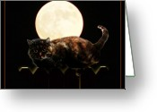 Trick Greeting Cards - Full Moon Cat Greeting Card by Gravityx Designs