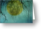 Tranquil Scene Greeting Cards - Full Moon Greeting Card by Jill Ferry