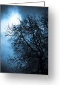 Ghostly Greeting Cards - Full Moon Greeting Card by Nila Newsom