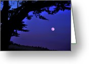 Cypress Tree Greeting Cards - Full Moon Rising Over Sea Greeting Card by Barbara Rich