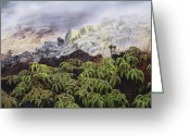 Fumarole Greeting Cards - Fumarole Vents Greeting Card by G. Brad Lewis