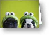 Looking At Camera Greeting Cards - Funny Dogs Greeting Card by Retales Botijero