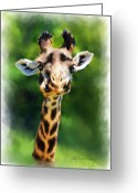 African Animals Painting Greeting Cards - Funny Giraffe Greeting Card by Michael Greenaway