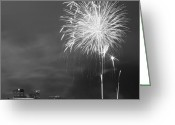 Black Fur Greeting Cards - Fur Rondy Fireworks Greeting Card by Ed Boudreau