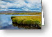 Colour Image Greeting Cards - Furnace lake in Ireland Greeting Card by Gabriela Insuratelu