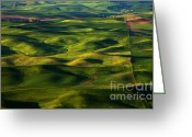 Wheatfields Photo Greeting Cards - Furrows and Folds Greeting Card by Mike  Dawson