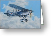 Fighters Painting Greeting Cards - Fury II RAF Greeting Card by Murray McLeod
