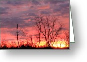 Suburbs Greeting Cards - Fuschia and Purple Sunset Greeting Card by Deborah Smolinske