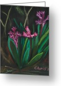 Fushia Painting Greeting Cards - Fushia Hyacinth Blossoms Greeting Card by Christina Plichta