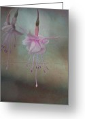 Digital Flower Greeting Cards - Fusia beauty Greeting Card by Jeff Burgess