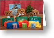 Christmas Blocks Greeting Cards - Fuzzy Bears 6 Greeting Card by Dinah Anaya