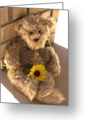 Lynnette Johns Greeting Cards - Fuzzy Teddy Greeting Card by Lynnette Johns