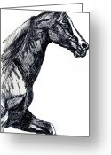 Gaited  Horse Greeting Cards - Gaited Horse Greeting Card by Nancy Degan