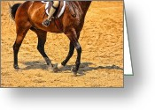 Horse Show Greeting Cards - Gallop Greeting Card by Karol  Livote