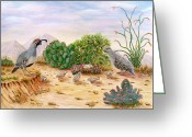 Quail Greeting Cards - Gambel Quails Day in the Life Greeting Card by Judy Filarecki