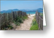The Way Forward Greeting Cards - Ganivelles (fences) And Pathway To The Beach Greeting Card by Alexandre Fundone
