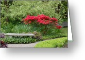 Long Beach Island Photos Greeting Cards - Garden 55 Greeting Card by Joyce StJames