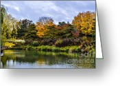 Changing Colors Greeting Cards - Garden Autumn Colors Greeting Card by Julie Palencia