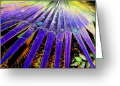 Palm Leaf Digital Art Greeting Cards - Garden Palm At Night Greeting Card by Eric Forster
