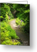 Shade Greeting Cards - Garden path Greeting Card by Elena Elisseeva