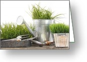 Beginnings Greeting Cards - Garden tools and watering can with grass Greeting Card by Sandra Cunningham