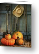 Pumpkin Farm Greeting Cards - Garden tools in shed with pumpkins Greeting Card by Sandra Cunningham